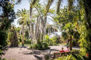 Jardín Botánico, Puerto de la Cruz